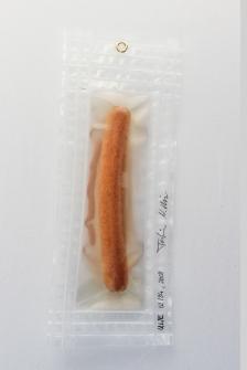 """02/34, """"Schönes Würstchen II"""", 26x9cm, Bockwurst, Wasser aus dem Tauchcontainer, Folie und Nieten"""