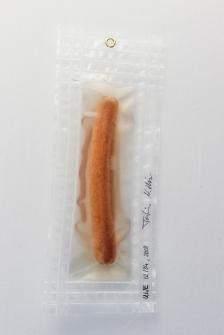 """03/34, """"Schönes Würstchen III"""", 27x11cm, Bockwurst, Wasser aus dem Tauchcontainer, Folie und Nieten"""